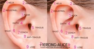 differents piercings d 39 oreille piercing le blog de piercing. Black Bedroom Furniture Sets. Home Design Ideas