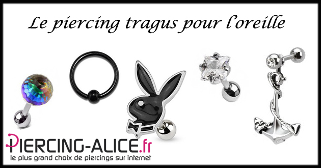 piercing tragus en zirconium un must du piercing l 39 oreille. Black Bedroom Furniture Sets. Home Design Ideas